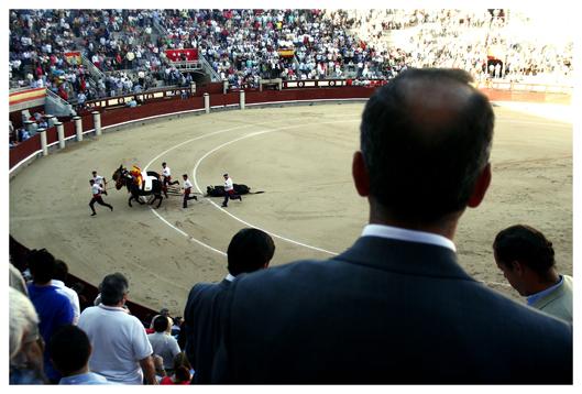 Corrida de toros in Las Ventas, Madrid, oder: Tod am Nachmittag ((Bullfighting in Las Ventas, Madrid, or: Death in the afternoon.)